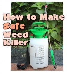 How To Make Safe Weed Killer