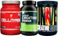 Creatine Supplements - Does Creatine Actually Build Muscle?