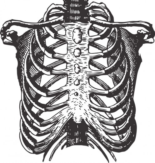 Costochondritis is an inflammatory condition in the chest cavity. Though harmless, it's very painful and is the most common cause of chest pain amongst children.