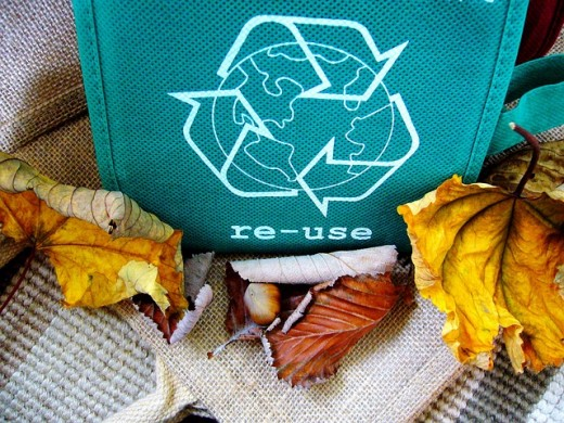 "A ""green"" reusable shopping bag as sold to replace single-use plastic bags."