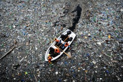 Everyone is Ignoring the Terrible State of Our Oceans
