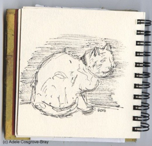 Ink sketch of Mutley, my beloved geriatric one-eyed ginger-and-white tom cat.  Drawing Mutley was easy because he spent much of his time asleep.