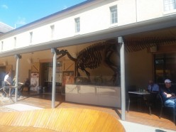 Visiting the Tasmanian Museum and Art Gallery in Hobart, Australia