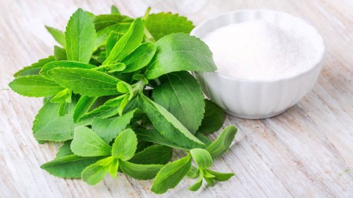 The Stevia Leaf