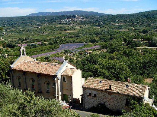 Panoramic view of Provence countryside and its lavender fields.