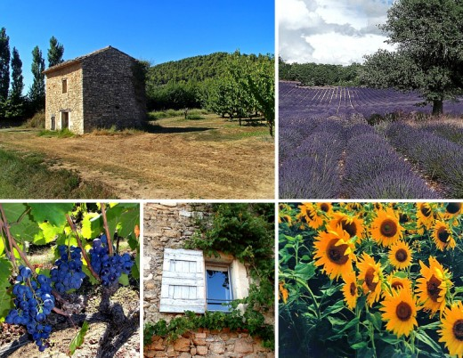 Clockwise from top left: stone farmhouse; lavender field; bright sunflowers; room with a view; black grapes at Domaine de Marie winery.