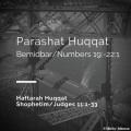 Parashat Huqqat