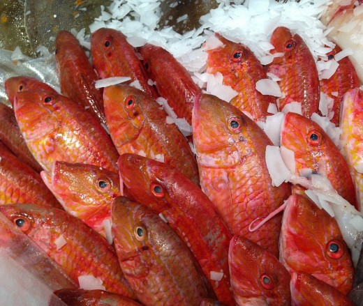 Eat mullet fish healthy bones and muscles