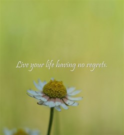 Common Regrets People Have