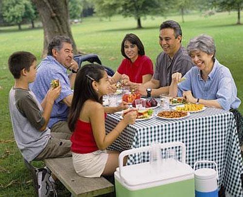 Group enjoying a picnic