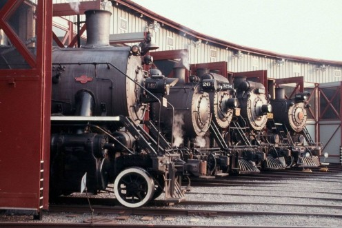 Five historic locomotives in a roundhouse.
