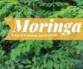 8 Health Benefits of Moringa