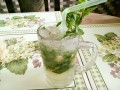 Homemade Virgin Mojito Recipe