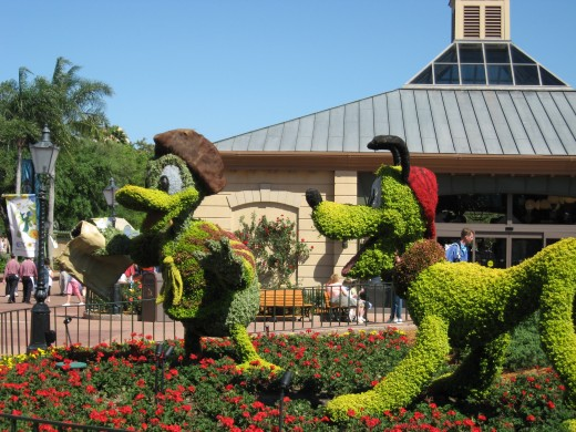 The topiary at the Disney parks is outstanding.