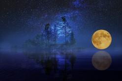 Leo Moon Sign Emotions