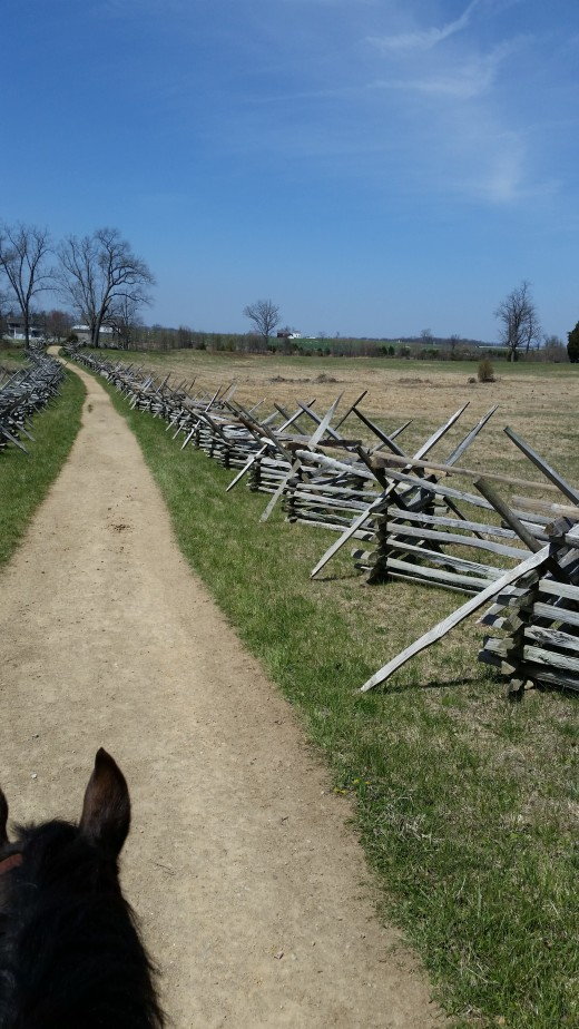Gettysburg battlefield view from horseback.