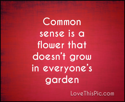 Common sense can be sorely lacking.