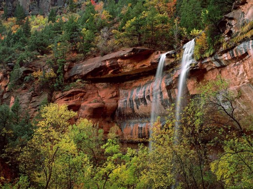 Emerald pools in zion national park