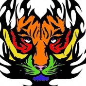 alleycatreiki profile image