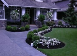 Tips from a Professional Landscaper for Your Home