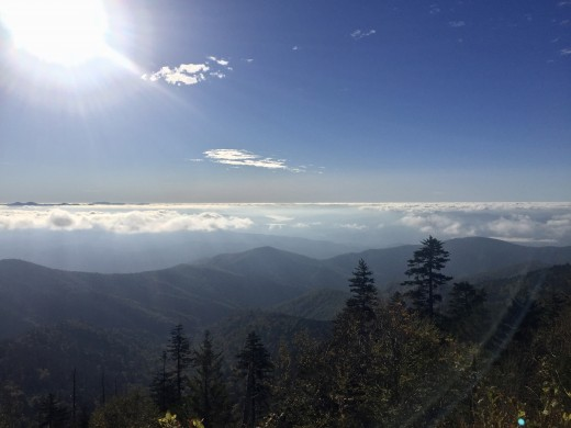 October morning on Clingman's Dome, Great Smoky Mountains