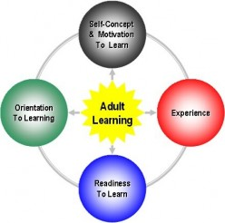 The Art of Adult Learning in the Work Environment