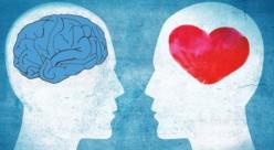 Schizophrenia Components
