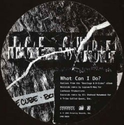 What Can I Do?  A Brief Analysis of Ice Cube's 1993 Classic