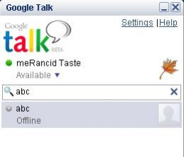 gtalk (google talk) appearance after login.