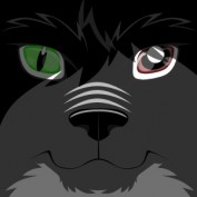 Shinzuu Katame profile image