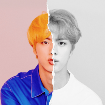Jin = Vocalist and worldwide handsome
