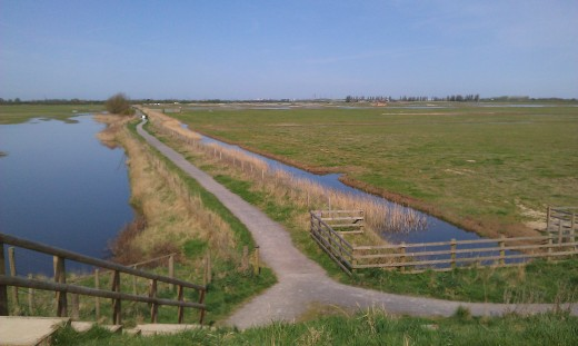 A photograph of Frampton Marsh taken by Andy Mabbett on a much nicer day than the day I visited.
