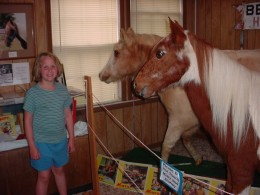 My daughter, Coralee, with the real (though stuffed) Misty of Chincoteague  and Stormy.