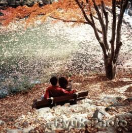autumn romance scene