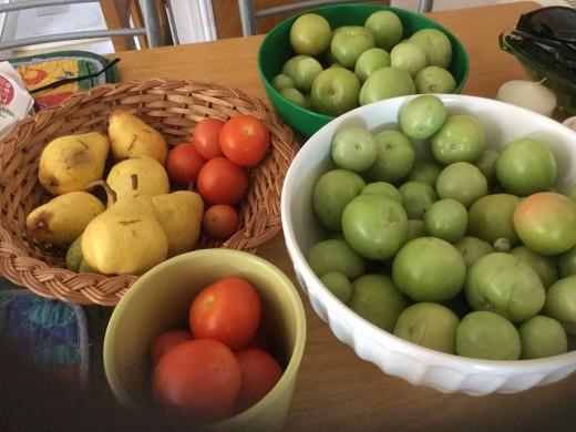 The garden produce