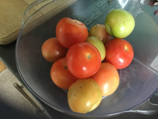 Mainly red with a few green tomatoes