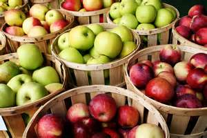 Bushels of apples at the farmers market