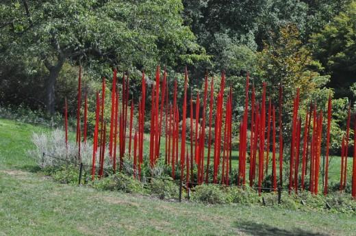 """Red Reeds"" 2008 Shrub Garden."
