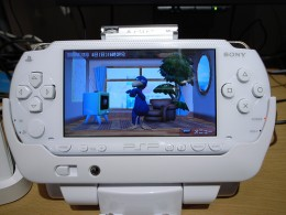 Sample picture of PSP
