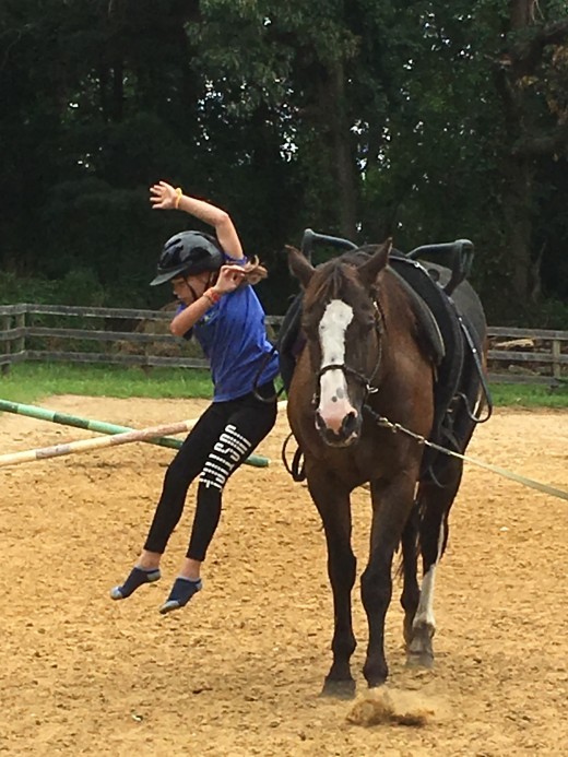 Romeo is great for beginner vaulting  lessons. He thinks walking slowly in a circle is fun, he doesn't seem to notice the kids climbing around on him and jumping off!