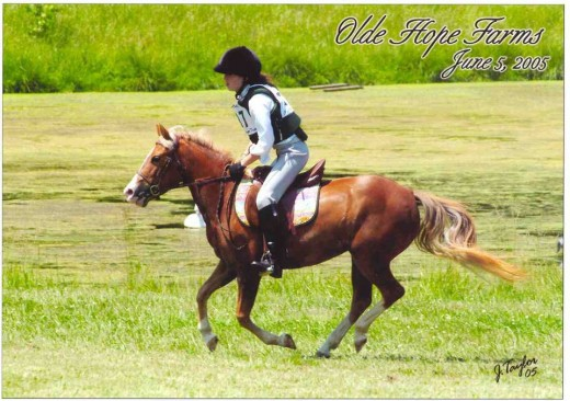 E is for Eventing, my adorable little Strudel pony galloping cross country.