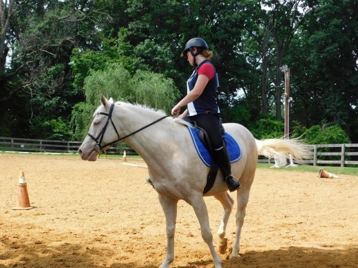 Uneven hands, make for crooked horse and crooked rider.