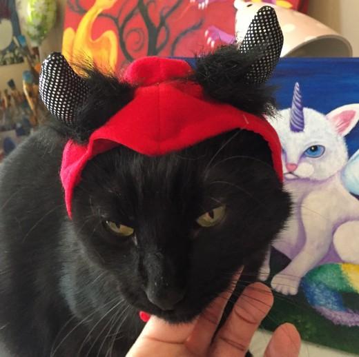 Our little devil, Drizzt