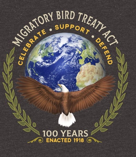 1918 statute makes it unlawful without a waiver to pursue, hunt, take, capture, kill, or sell birds listed therein as migratory birds