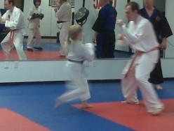 Why Study Karate?