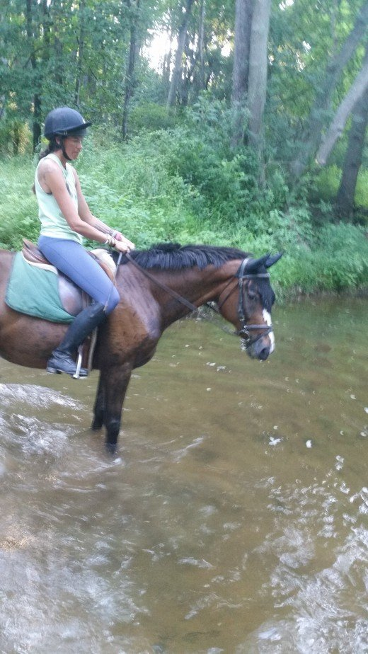 Trail rides are great for mental health days!