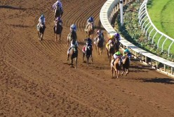 The Breeders' Cup: The Most Electrifying Horse Racing Event
