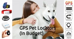 15 Cheap GPS Trackers For Pets