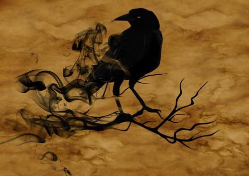 Raven Crow Night Creepy Darkness Mystical Gloomy Quotes