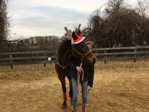 You wouldn't want to miss out on an opportunity to embarrass your horse, like I did to Kemerton for a Christmas card picture!